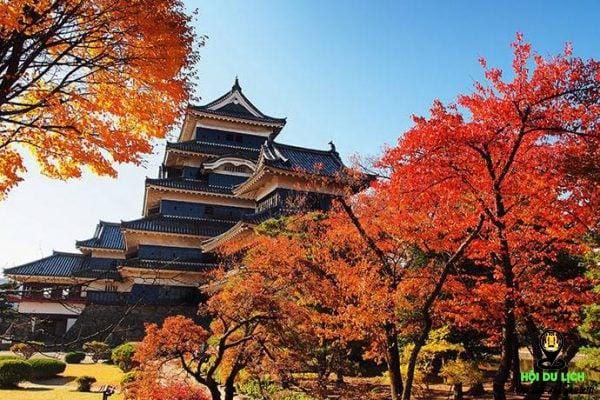 Lâu đài Matsumoto khi thu về- ảnh sưu tầm