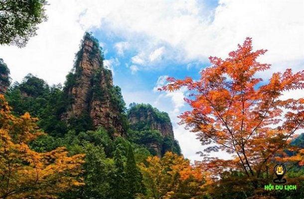 Mùa thu ở Trương Gia Giới- ảnh sưu tầm