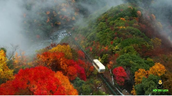 Mùa thu ở thung lũng Iya - Tokushima- ảnh sưu tầm