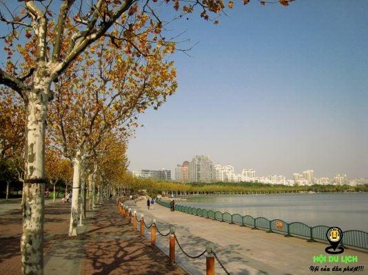 Mùa thu Thượng Hải - Trung Quốc đẹp bình yên- ảnh sưu tầm