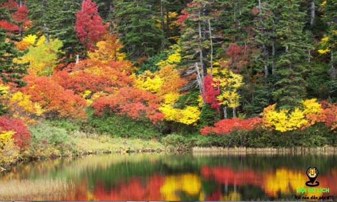 Mùa thu tuyệt đẹp ở công viên Daisetsuzan của Nhật- ảnh sưu tầm