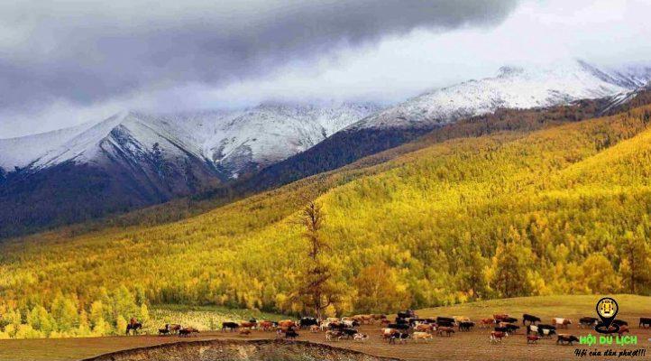 Thu về ở khu bảo tồn thiên nhiên Kanas Tân Cương- ảnh sưu tầm