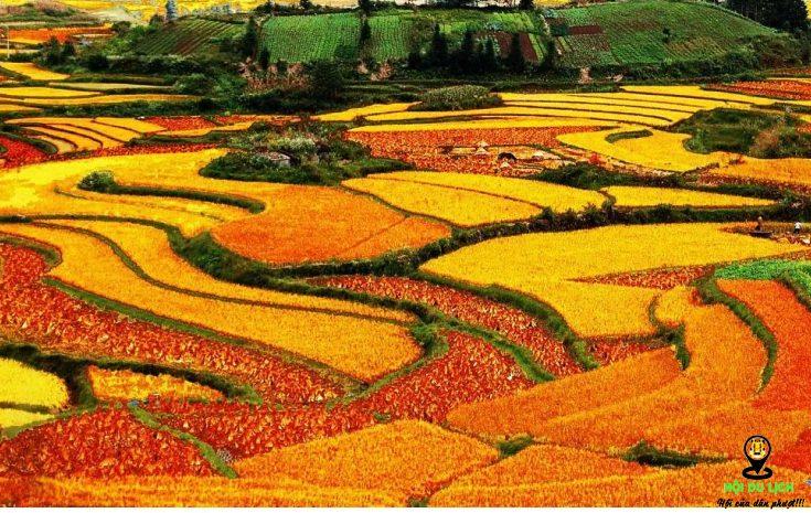 Mùa thu ở Tây Nam- ảnh sưu tầm