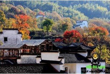 Top 5 điểm du lịch mùa thu Trung Quốc đẹp nhất