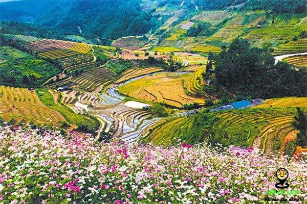 Xã La Pán Tẩn - nơi sở hữu diện tích ruộng bậc thang lớn nhất tại Mù Cang Chải