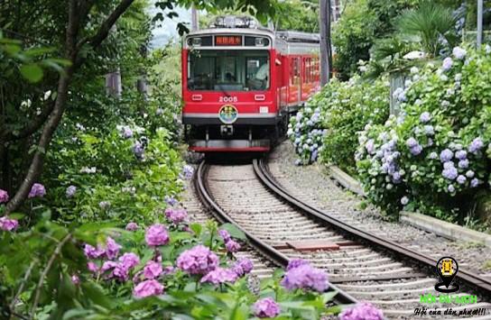 Tàu hỏa là phương tiện di chuyển của nhiều du khách ở Nhật - ảnh sưu tầm