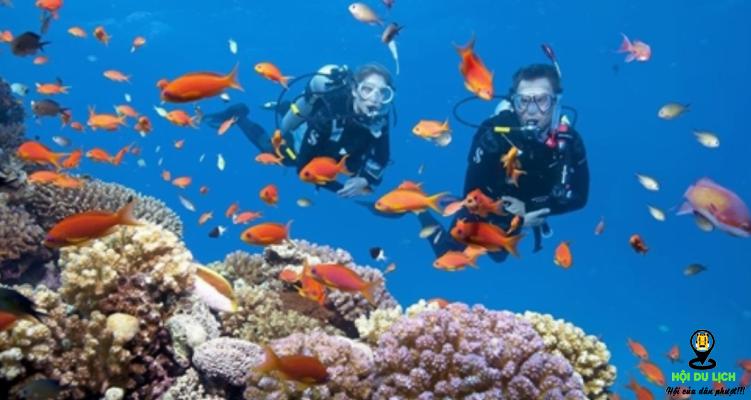 Khám phá đại dương tại đảo Koh Larn- ảnh sưu tầm