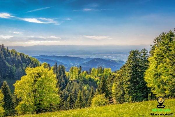 Khám phá khu Rừng Đen xinh đẹp của nước Đức- ảnh sưu tầm