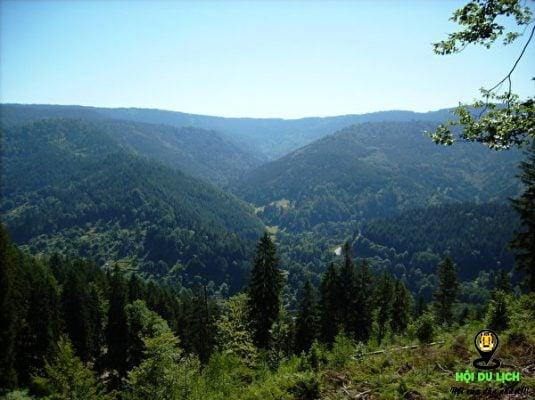 Phía Bắc Rừng Đen nhìn từ xa- ảnh sưu tầm