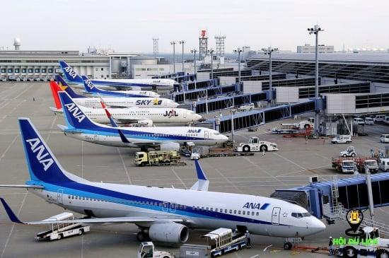 Chọn máy bay khi du lịch Nhật - ảnh sưu tầm