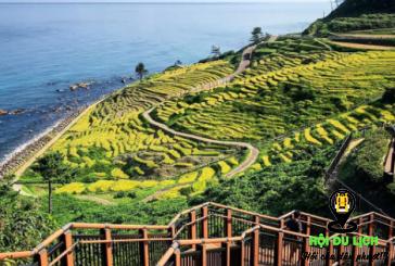 Ruộng bậc thang đẹp hàng đầu tại Nhật Bản