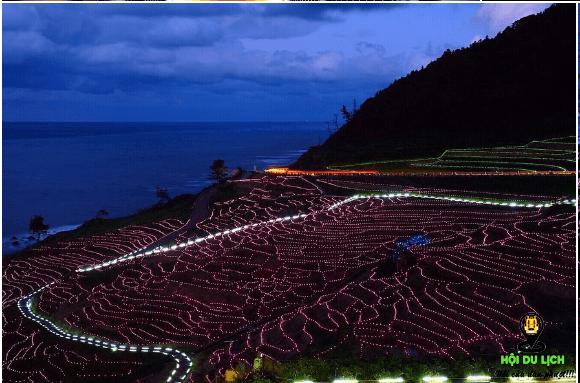 Vẻ đẹp lung linh của các thửa ruộng về đêm- ảnh sưu tầm