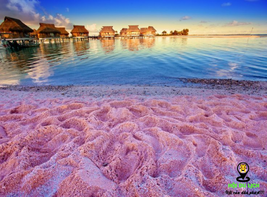 Bãi biển đảo Harbor - Bahamas mang sắc hồng đậm