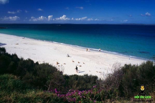 Cho dù du lịch Úc vào mùa nào thì bạn cũng không nên bỏ qua Vịnh Jervis