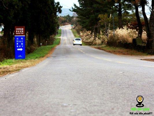 """""""Con đường ma"""" chỉ có tại đảo Jeju Hàn Quốc"""