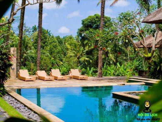 Khách sạn Indigo Tree, Ubud với hàng dừa xanh mát