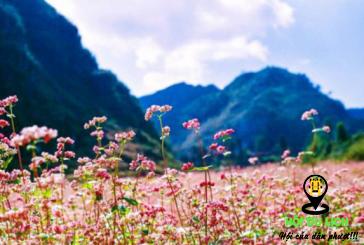 Top 5 quốc gia có cảnh đẹp mùa thu đẹp ngất ngây