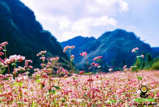 Mùa thu ở Việt Nam