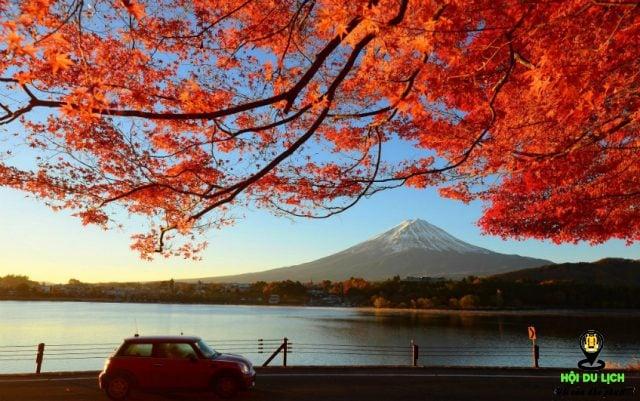 Núi Phú Sĩ sắc thu rực rỡ