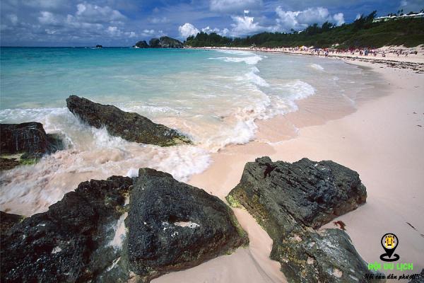 Bãi biển hồng vịnh Horseshoe - Bermuda