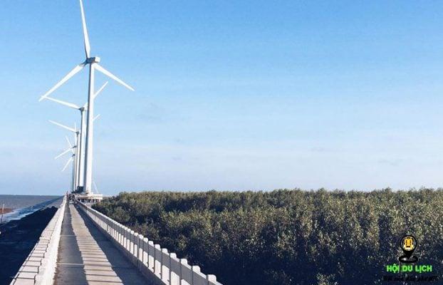 Những chiếc turbine tại cánh đồng điện gió