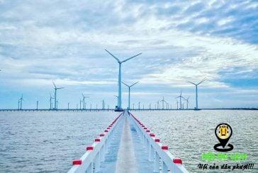 Bạn có biết đến cánh đồng điện gió tại Việt Nam