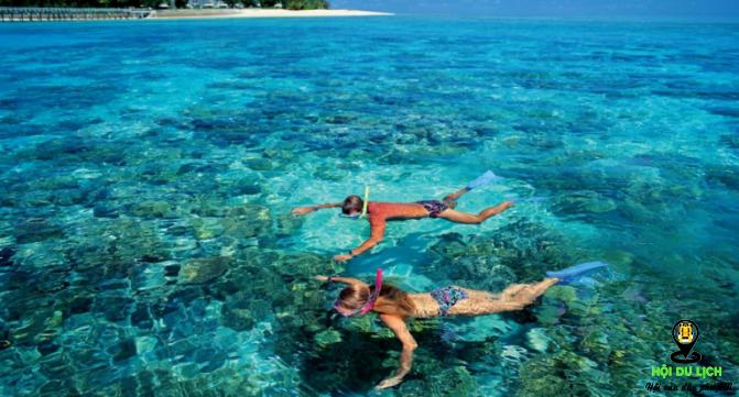 Lặn ngắm san hô hoạt động du lịch nhiều người ưa thích (ảnh sưu tầm)