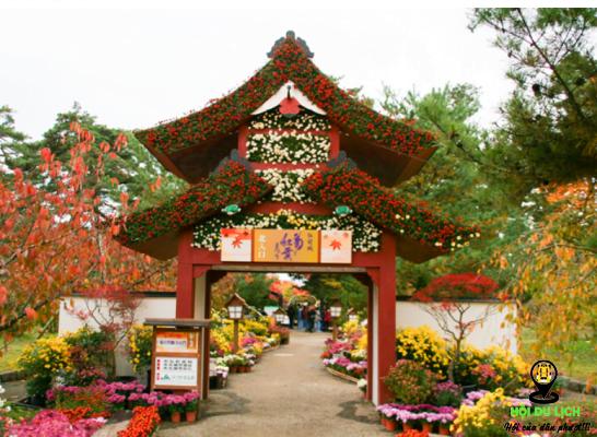 Triển lãm hoa cúc ở Tokyo của Nhật (ảnh sưu tầm)