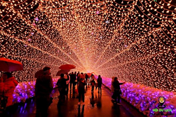 lễ hội ánh sáng trong mùa thu ở Nhật Bản (ảnh sưu tầm)