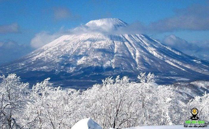 Top 5 địa điểm du lịch Nhật Bản không nên bỏ qua