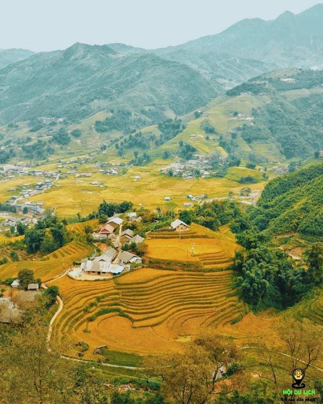 mùa lúa chín ở Hà Giang. Ảnh sưu tầm