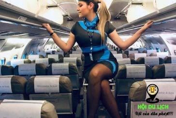 Khi máy bay ế khách các nữ tiếp viên xinh đẹp làm gì?