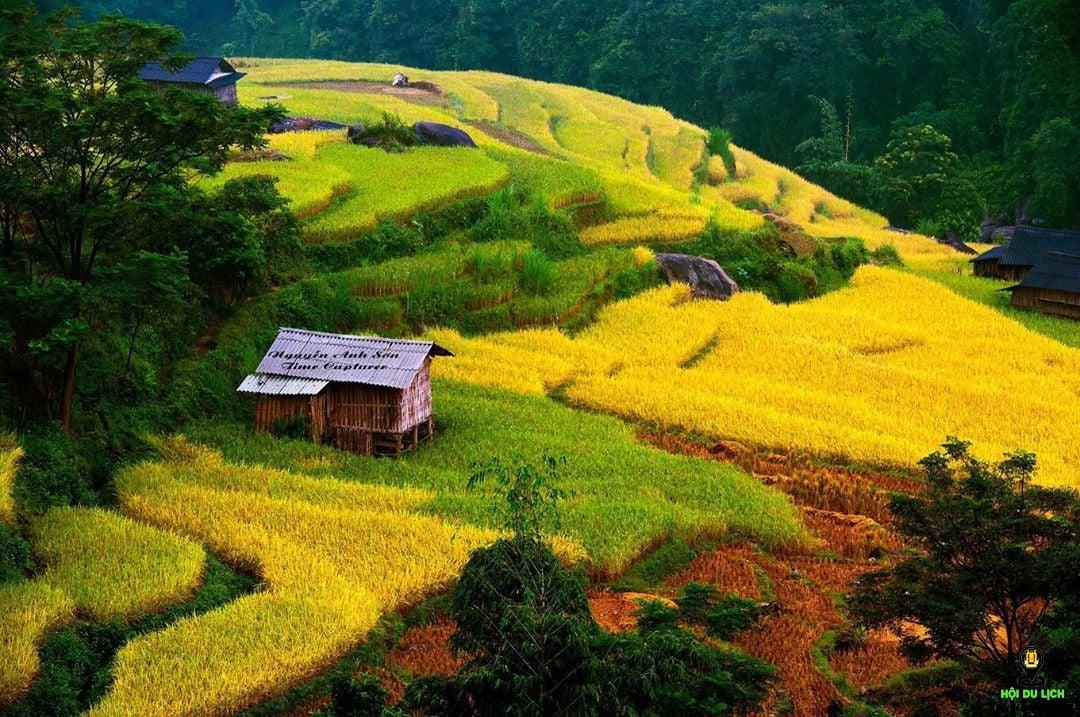 Thời điểm lý tưởng để ngắm mùa lúa chính ở Hà Giang