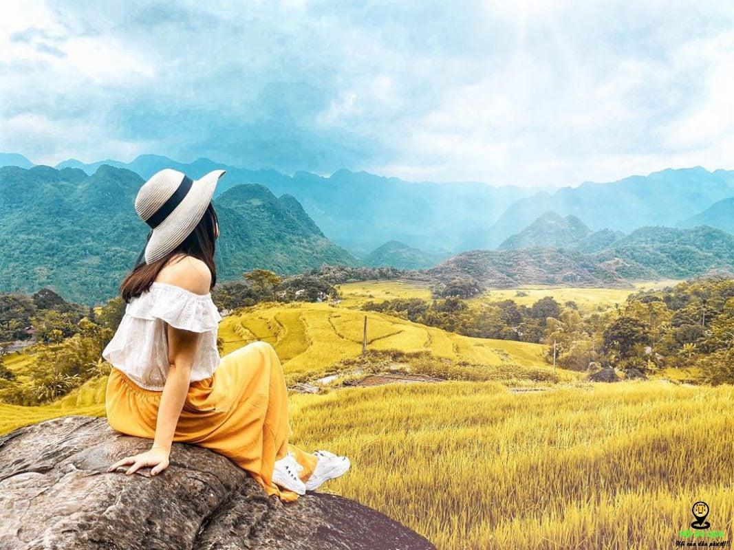 Những địa điểm ngắm mùa lúa chín ở Hà Giang đẹp nhất