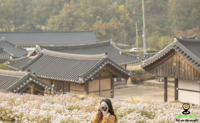 Hãy đến khu di tích Gyeongju Hàn Quốc, dù chỉ một lần trong đời