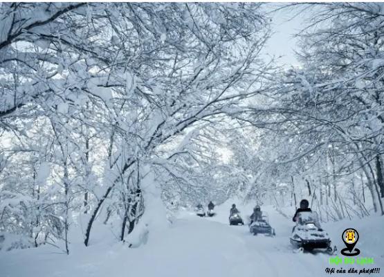 Hokkaido của Nhật trong mùa đông (ảnh sưu tầm)