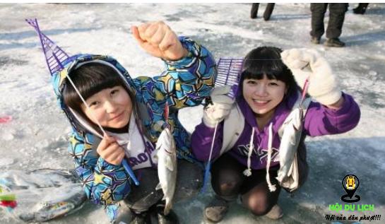 Những chú cá được câu lên khỏi lớp băng (ảnh sưu tầm)