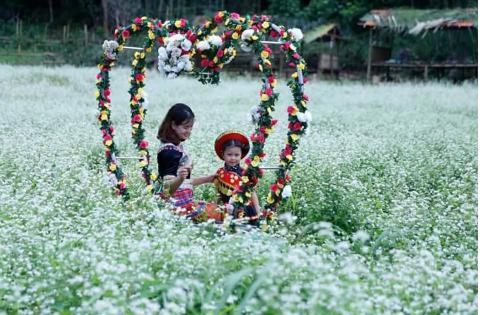 Chụp những tấm hình đẹp giữa ngàn hoa (ảnh sưu tầm)