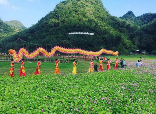 Thung lũng hoa Bắc Sơn với sắc hoa đẹp tuyệt (ảnh sưu tầm)