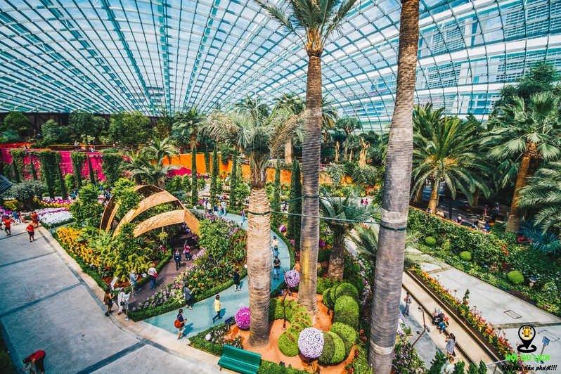 Khu vườn Garden by the Bay - một tuyệt tác tại Singapore