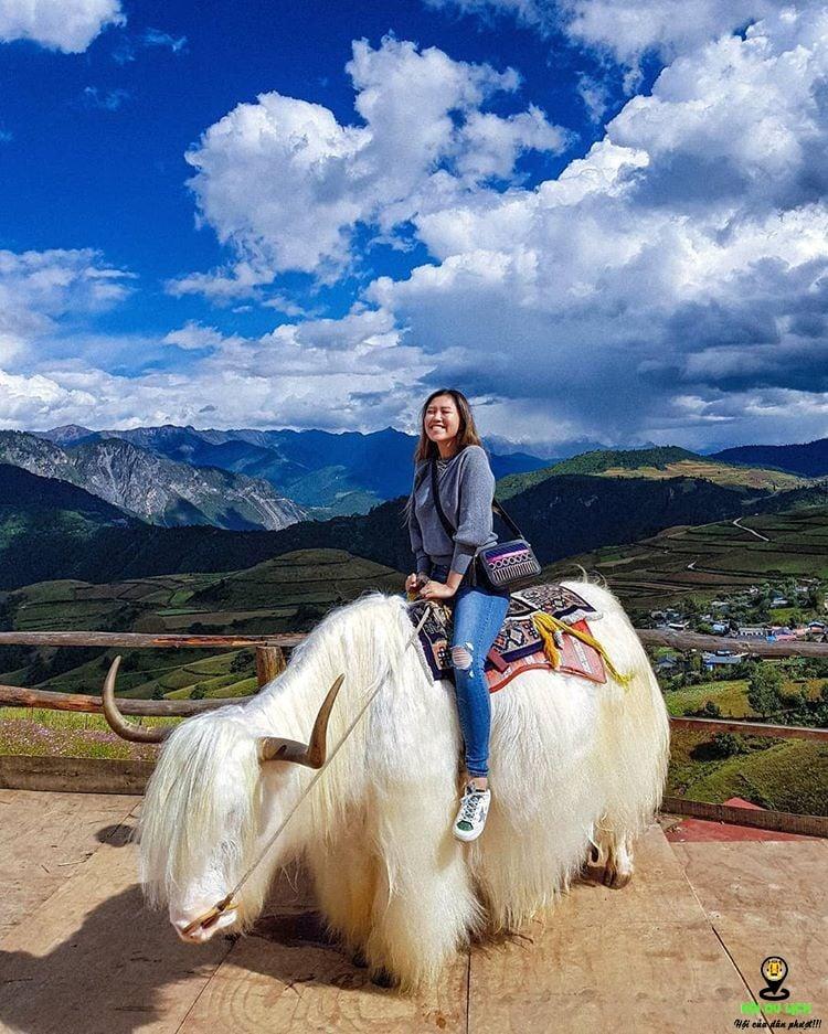 Du khách check in tại Núi Tuyết Ngọc Long