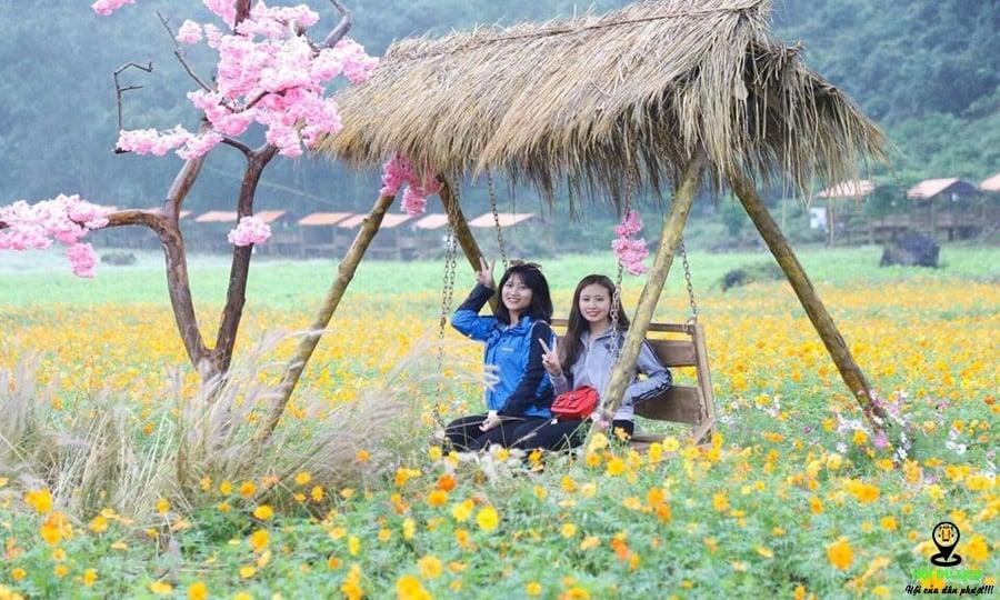 Cách di chuyển và giá vé vào thung lũng hoa Yên Tử